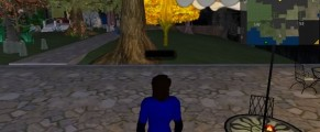 Second Life Me