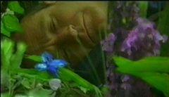 Immagini referenziali e immagini sintetiche What Dreams May Come Vincent Ward, Stephen Simon, Barnel Bain Mass. Illusion, POP, Digital Domain