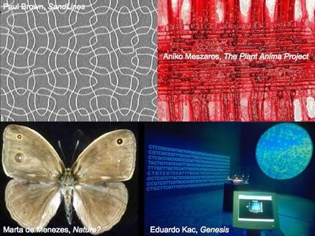 Art, Multiplicity and Awareness