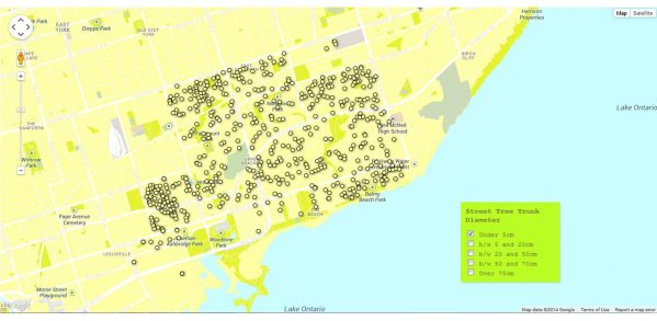 Fig. 6 Justin Miron: online street tree mapping system 2015