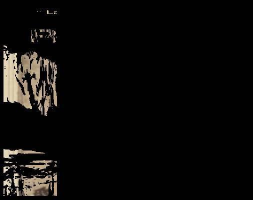 religious,_documentary--22534-101074.jpg