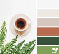 design seeds || color served