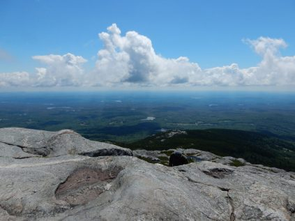 View from the summit looking north