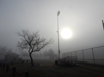 lamp poles