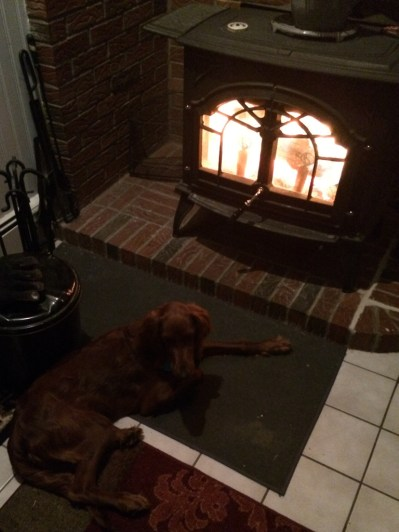 I don't know how Maddie can lay so close to the fire, but she loves it