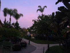 Full moon over hotel garden