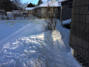 My wife shoveled this by hand, before I got home. It was big enough for a couple of days.