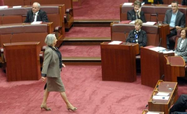 LNP senator Sue Boyce crossed the floor to vote.