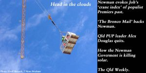 Head in the clouds. Campbell Newman mounts a crane to count cranes.