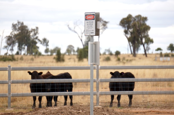 Farmers are worried about the impact of CSG on agriculture.