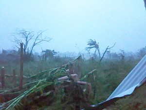 Morning reveals devastation. Photo: @Teoumagirl via twitter