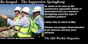 Re-borged: The Supportive Springborg