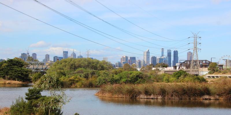 Melbourne skyline from Footscray wetlands. Photo: John Englart