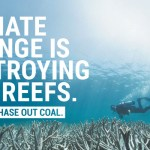 Climate Council ad in Courier Mail on Great Barrier Reef