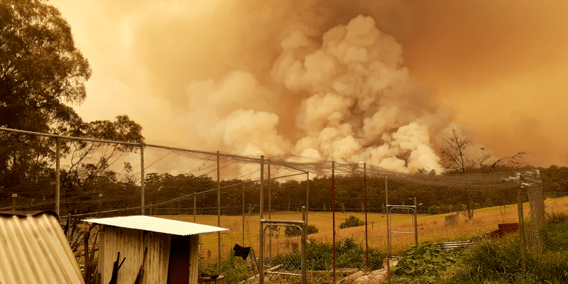 Diary of an Orbost climate refugee: @greengipps reports on #AustralianBushfires