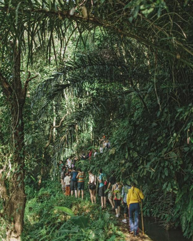 Bambu Indah Excursion