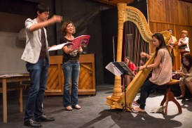 The beautiful harpist and soloist