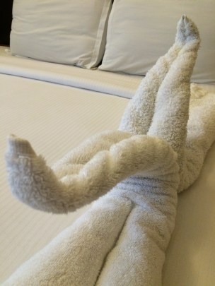 Radha Prasad, India, Tiruchengode, Jamie Chan, Travel, Hotel Rooms, Animal towels, Swans