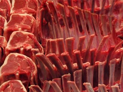 TripodGirl_meat500