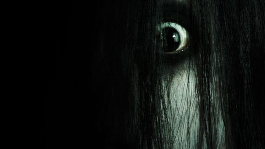 Killing Everything It Touches – Celebrating 14 Cursed Years of THE GRUDGE