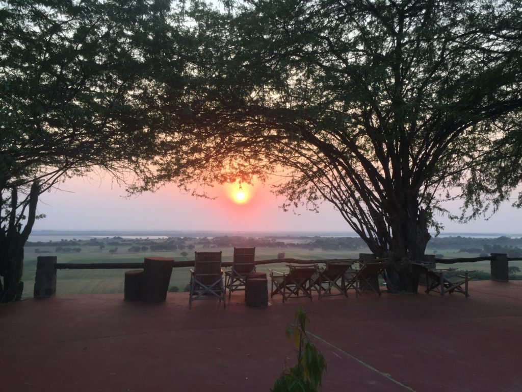 Sun setting beyond the seating area under the trees at Lei Thar Gone Guesthouse