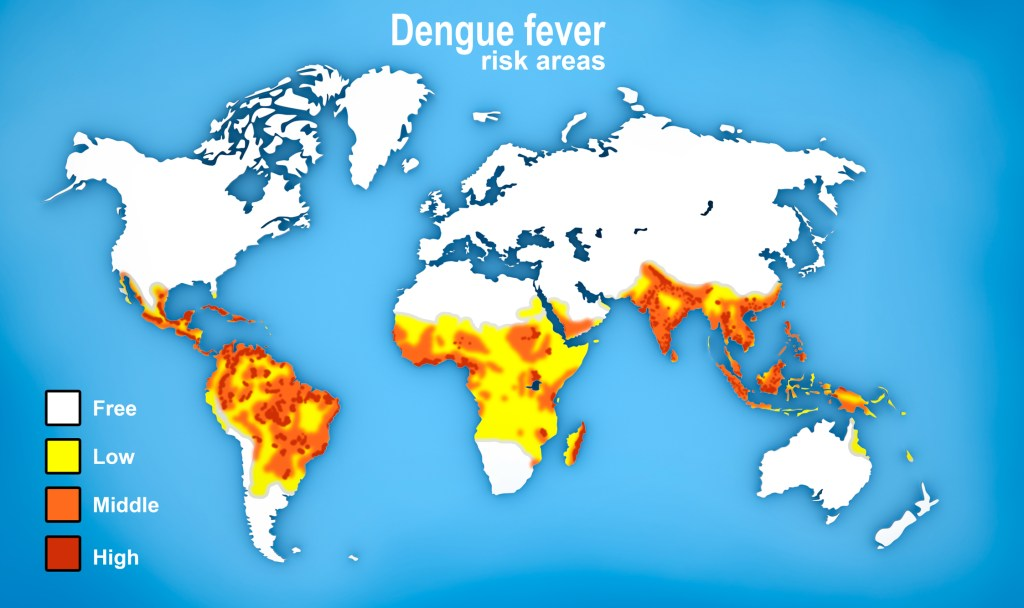 World map showing risk of dengue fever by way of color-coding
