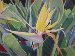 Yellow Bird of Paradise by Fabienne Blanc