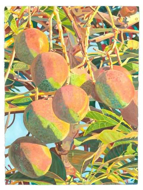 'Morning Mangoes' watercolor by Fabienne Blanc, Giclée Print, custom sizes
