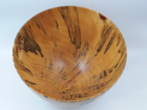 "Andy Cole Norfolk Pine Bowl 8"" x 12"""