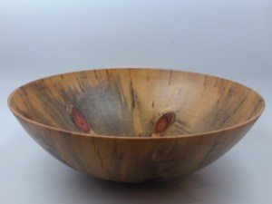 "Andy Cole Norfolk Pine Bowl 5"" x 15"""