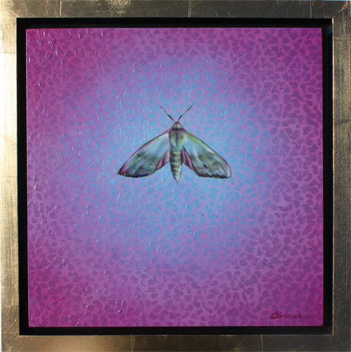 "Fabulous Green Sphinx moth by Melissa Chimera 15"" x 15"""