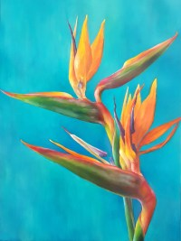"Lauren Salm Bird of Paradise Turquoise Print on Canvas 22"" x 16"""