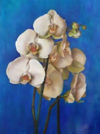 "Lauren Salm Orchid Thalo Print on Canvas 22"" x 16"""