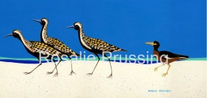 Rosalie Prussing Playful Plovers - Hawaii