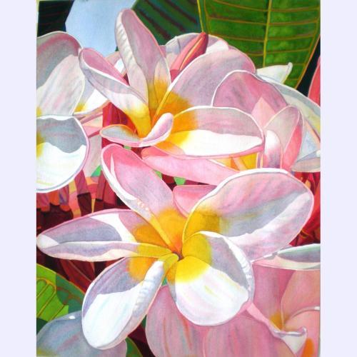 'Pink Plumeria' watercolor by Fabienne Blanc, Giclée Print, custom sizes