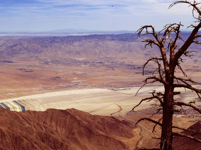 view from mt san jacinto mountain sttaion