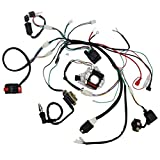 Top 10 110cc ATV Parts – Powersports Wiring Harnesses