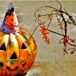 ハロウィンの仮装で大人が変身!驚きの海外クオリティ!