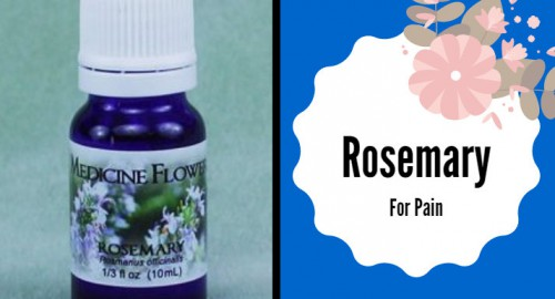 Rosemary-For-Pain