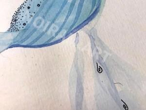 Aquarelle noiram mlam poncet uterus eau ovaire