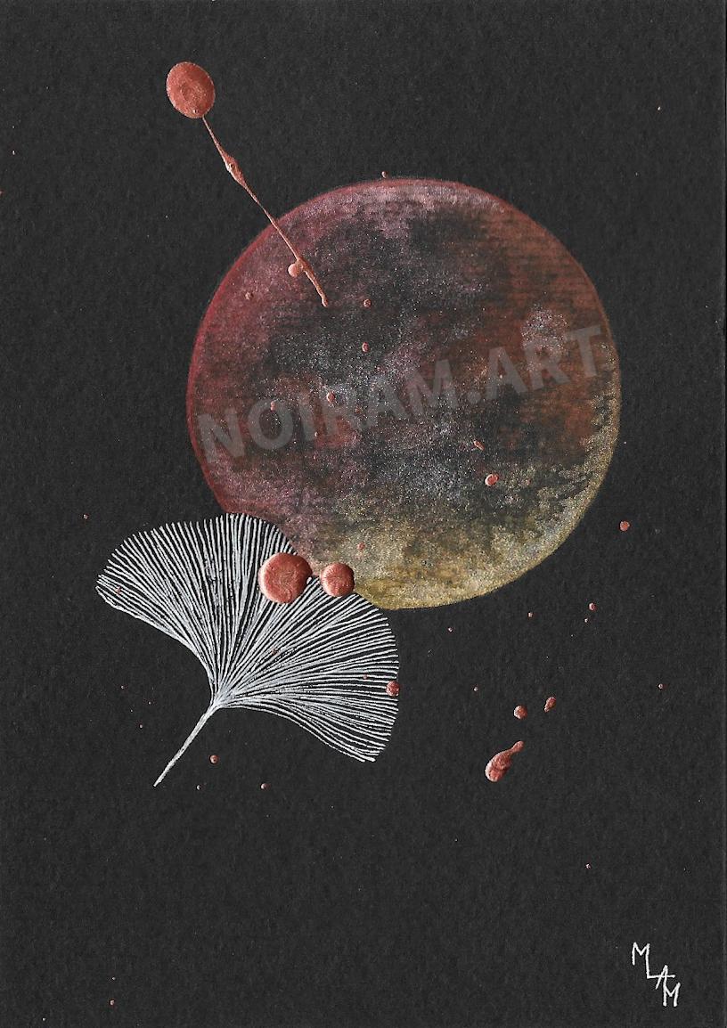 Aquarelle papier noir astragale ginkgo mlam noiram marion-lorraine poncet planète plante