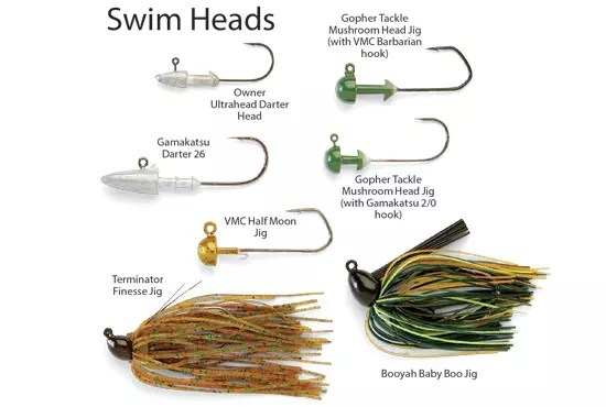 swim-heads-in-fisherman