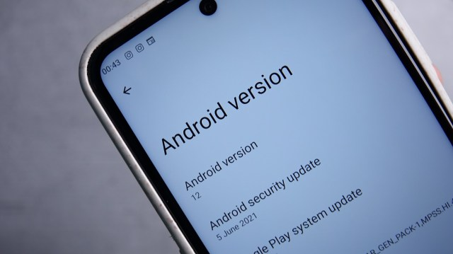 Android 12 DP on Nokia X20