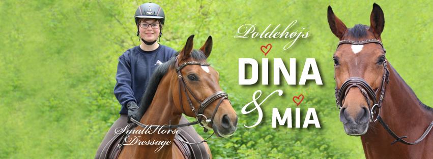 Poldehøjs Dina facebook cover