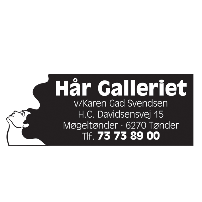 Hår Galleriet logo