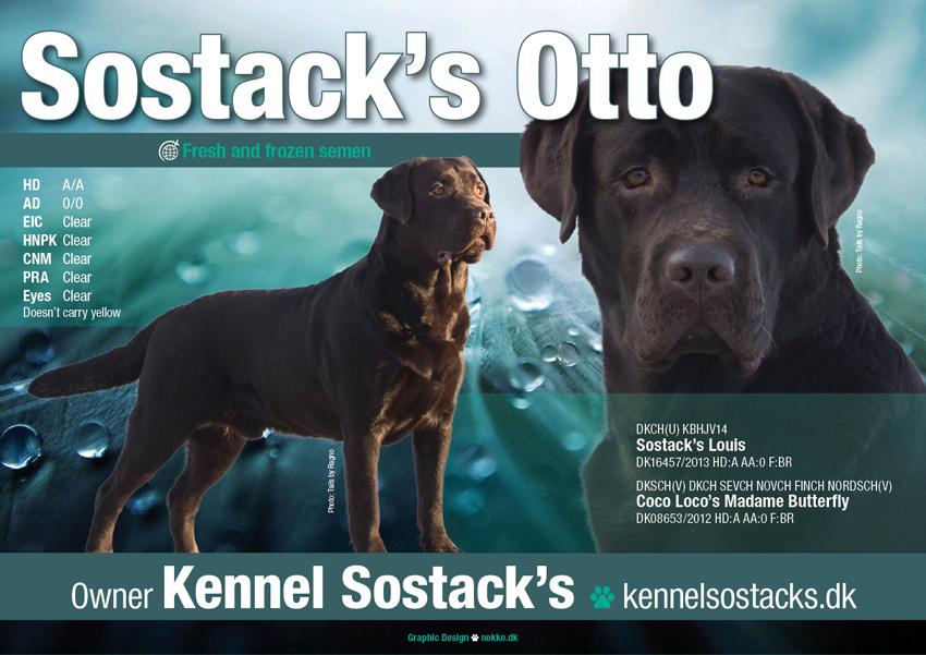 Sostack's Otto