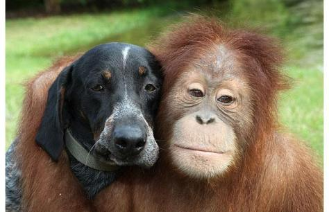Unconditional love honors our differences.