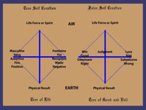 The Cross Process