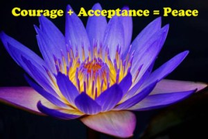 courage, acceptance, and peace