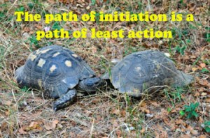 nitiation is a path of least action
